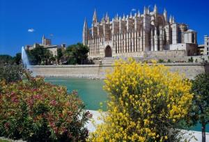 katedral i Palma